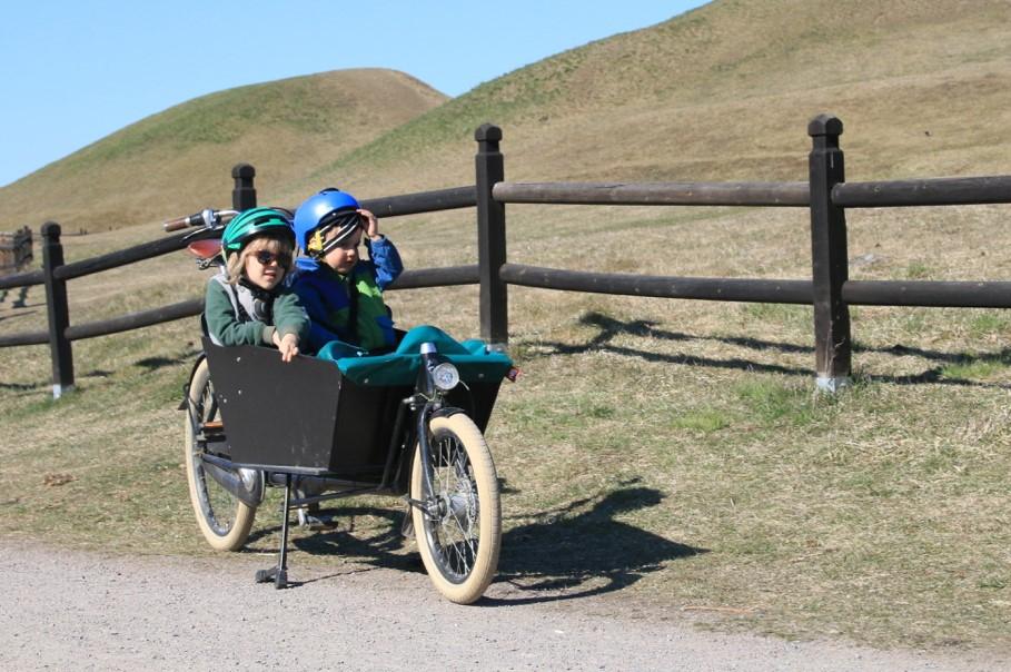 två barn sitter i lastcykel